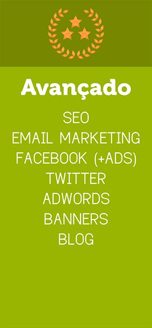 Assessoria Marketing Digital Porto Alegre - Plano Avançado